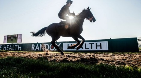 2018 Grand National – Finding the Winner