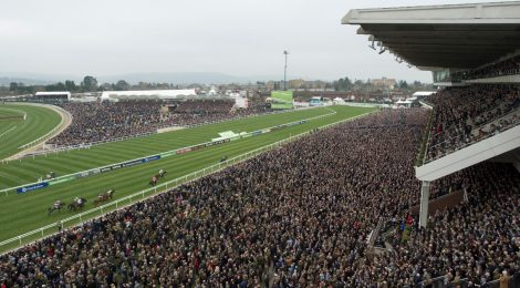 Adding your Cheltenham Festival tips into a Lucky 15